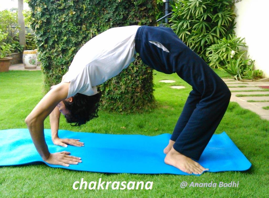 Chakrasan (Wheel Posture)